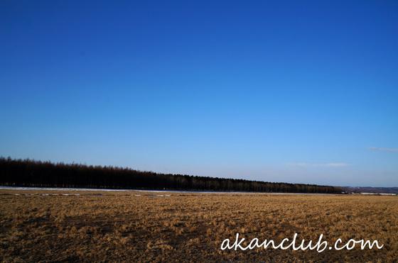 20140308a.jpg